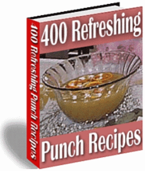 Product picture *New* Punch Recipes 2011